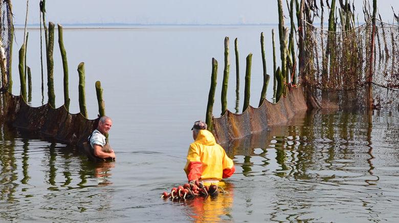 De vissers