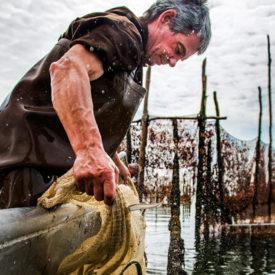 Nieuwe website Stichting Behoud Weervisserij